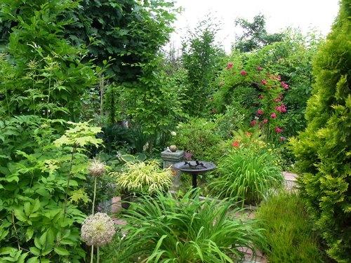 お庭4.jpg