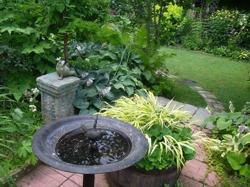 お庭5.jpg