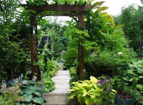 お庭6.jpg