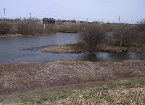 中の川.jpg