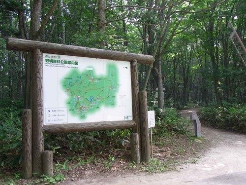 野幌森林公園.jpg